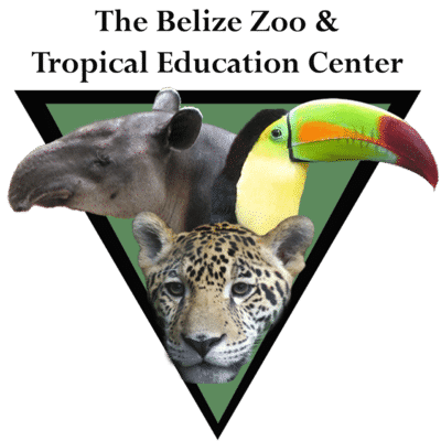 The Belize zoo & Tropical Education Center