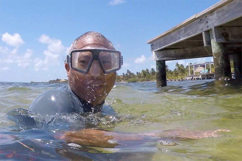 Snorkeling from the Private Dock