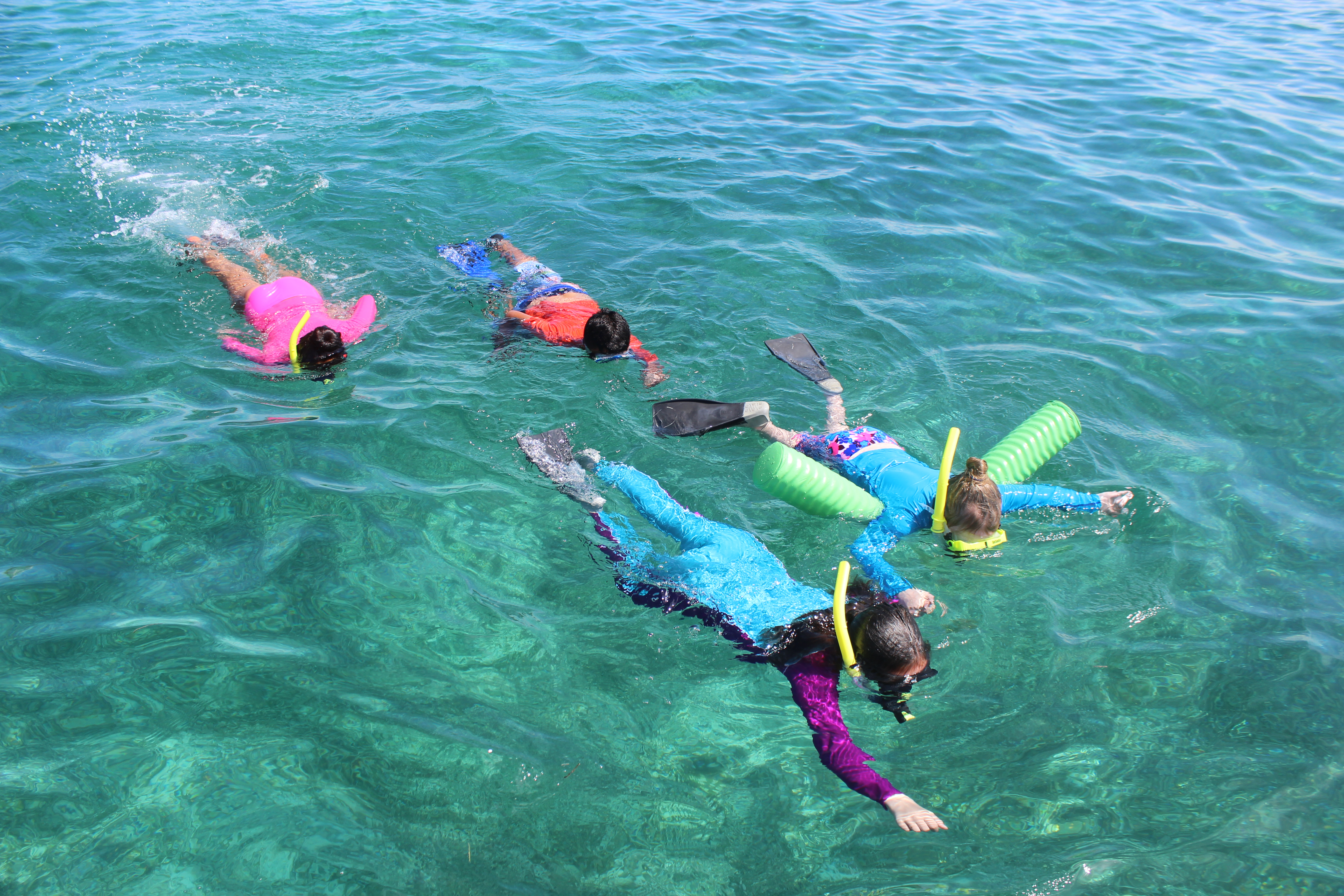 Canary Cove Privately Guided Snorkeling Fun at Mexico Rocks, Minutes from Canary Cove